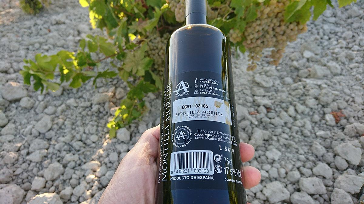 El verano tiene aroma de Amontillado Amanecer, elegancia en estado puro 5