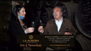 Homenaje a los vinos Montilla-Moriles visita a Bodegas La Aurora