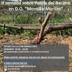 II Jornada sobre Polilla del Racimo en Montilla-Moriles