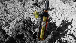 Cata nuestros nuevos vinos en rama el próximo lunes en el Círculo de la Amistad de Córdoba