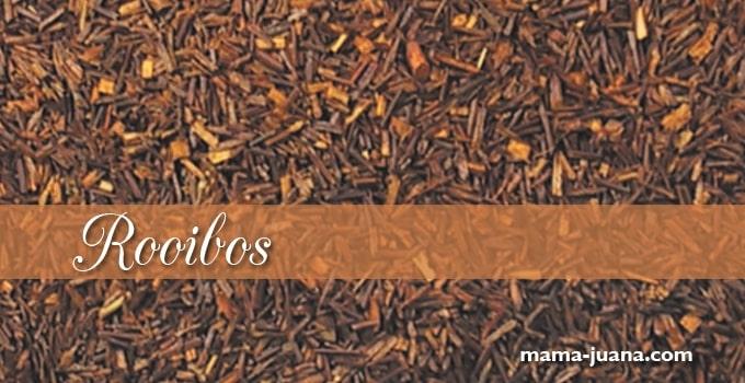 INFUSIÓN DE ROOIBOS: Remedio natural para alergias