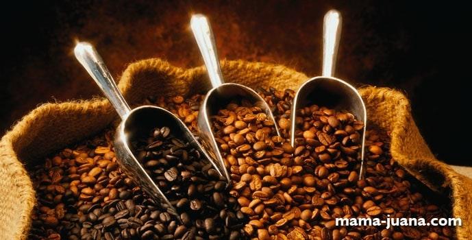 ¿CAFÉ EN GRANO, MOLIDO O SOLUBLE?