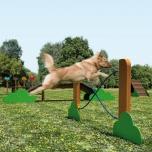 Parques para perros y mascotas