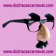 Gafas con nariz y pelo