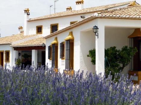 La Finca Santa Elena, entre los 31 mejores alojamientos de interior de la Comunidad