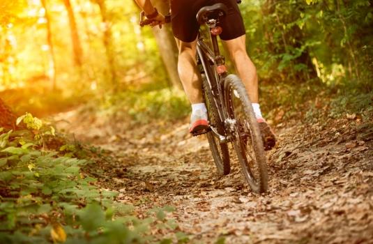 Ruta de cicloturismo