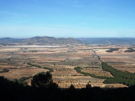 Los Alhorines: valle agrícola y paisaje de aves