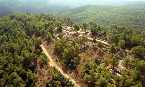 Nuestro pasado mediterráneo: visita las ruinas íberas de Moixent
