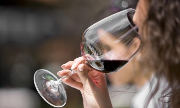 Cata de Vinos en Bocairent