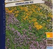 AUBRETIA GRANDIFLORA MEZCLA (0,8 gr.).