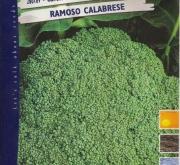 BROCOLI RAMOSO CALABRES