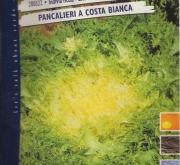ESCAROLA PANCALIERI DE TALLO BLANCO
