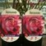 ROSAL JULIO IGLESIAS ® - Meistemon