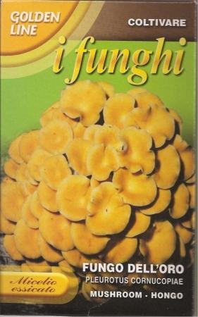FUNGO DELL´ORO - CUERNO DE LA ABUNDACIA (100 gr.).