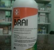 BRAI (1 .).