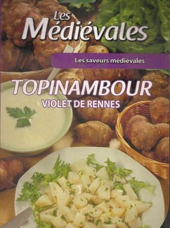 TOPINAMBOUR VIOLET DE RENNES (5 Unid.).