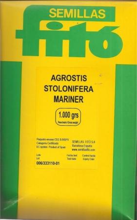 AGROSTIS STOLONIFERA MARINER (1 Kgr.).