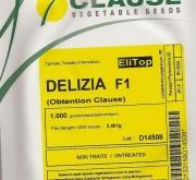 TOMATE DELIZIA F1 (1000 Semillas)