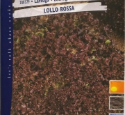 LECHUGA LOLLO ROSSA