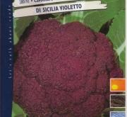 COLIFLOR VIOLETA DE SICILIA (Cerca de 12.000...