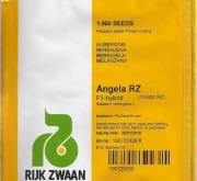BERENJENA ANGELA RZ F1- Envase de 1000 semillas