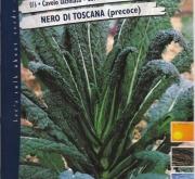 COL NEGRA DE TOSCANA PRECOZ (Cerca de 6 gr.).