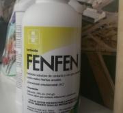 FENFEN (1 l.).