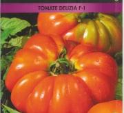 TOMATE DELIZIA F-1 (0,12 gr. - Cerca de 30...