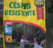 CESPED RESISTENTE (5 Kgr.).