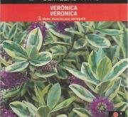 VERONICA SPICATA (0,8 gr.).