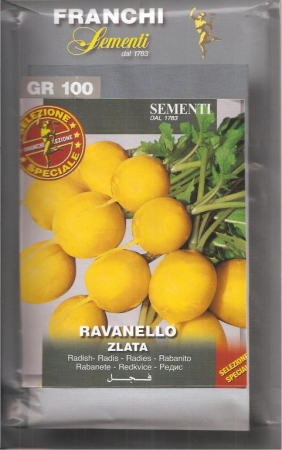 RABANITO REDONDO AMARILLO ZLATA (100 gr.).