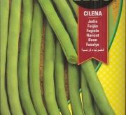 JUDIA CILENA (1 Kgr.).