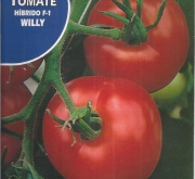 TOMATE WILLY F-1 (Cerca de 30 Semillas)