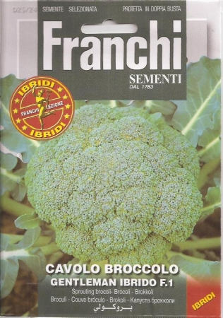 BROCOLI GENTLEMAN / GREENBOW F1 (0,25 gr.).
