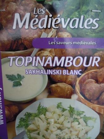 TOPINAMBOUR SAKHALINSKI BLANC (5 Unid.).