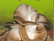 Micelio de Setas y Alpacas Inoculadas