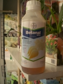 BETANAL AM 22 (1 l.).