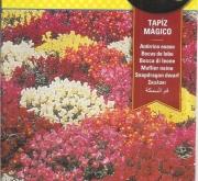 ANTIRRINO ENANO TAPIZ MÁGICO VARIADO (2 gr.).