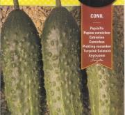 PEPINO CONIL F1 (Cerca de 600 Semillas - 10X60...