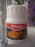 PRISMA (100 c.c.).