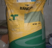 TRIGO BANCAL (40 Kgr.) - Mínimo 28 Sacos.