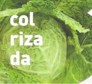 COL RIZADA MS12