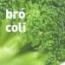 QUIERO COMPRAR PLANTEL DE BROCOLI