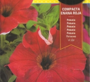 PETUNIA COMPACTA ENANA ROJA (0,6 gr.).