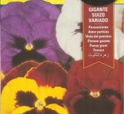 PENSAMIENTO GIGANTE SUIZO VARIADO (0,6 gr.).