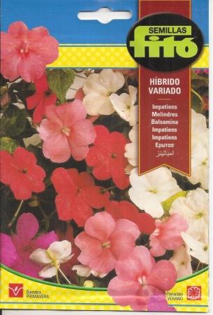 IMPATIENS HIBRIDO VARIADO (0,2 gr.).