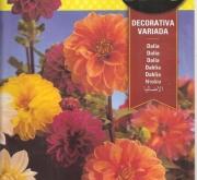 DALIA DECORATIVA VARIADA (1 gr.).