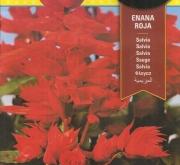 SALVIA ENANA ROJA (0,7 gr.).