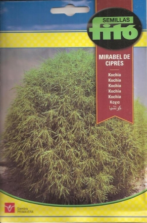 KOCHIA MIRABEL DE CIPRES (6 gr.).