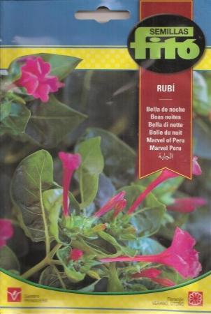 BELLA DE NOCHE RUBI (8 gr.).